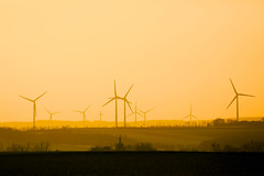Wind turbines skyline, orange sunset