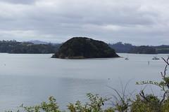 Paihia and Waitangi