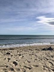 Leucate plage