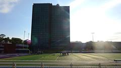Huskies Stadium and Loyola Residence Tower