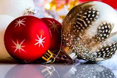 Reflection - Miniature Christmas Decorations