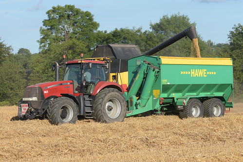 New Holland CX8.70 Combine Harvester unloading Winter Barley to a Hawe Chaser Bin drawn by a Case IH Magnum 335 Tractor