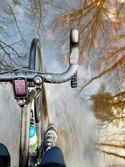 2019 Bike 180: Day 207 - Puddle