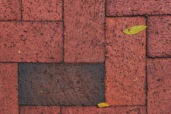 Brick Walkway Outside Carmello's, Manassas, VA_DSC7481-copy-1-A-1-C-1