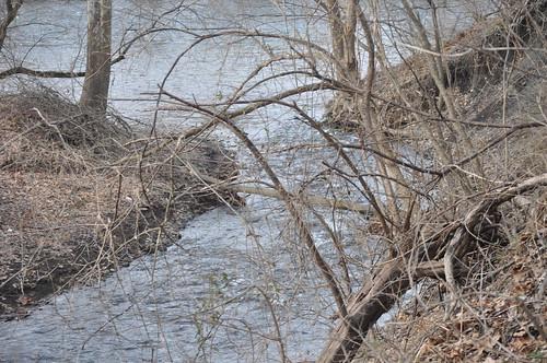 Lehigh Canal runoff