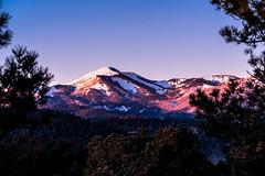 Sierra Blanca Peak at dawn