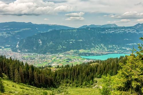 Schynige Platte - Switzerland