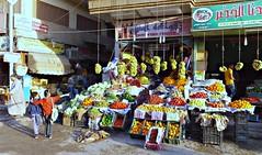 Shopping in Luxor, Egypt.
