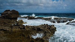 Bonaire Kust