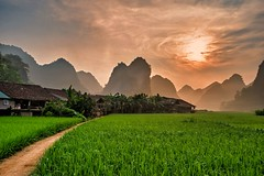 Phu Thap Sunrise
