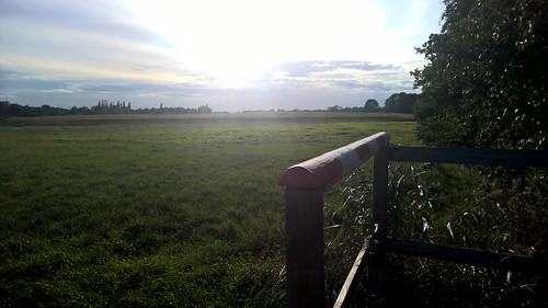 Sunny meadow at Kiel Hammer