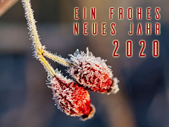 Frohes neues Jahr 2020 - HAPPY NEW YEAR 2020 - BONNE ANNÉE 2020 - FELIZ AÑO NUEVO 2020