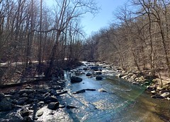 New Year's Day 2020 - Rock Creek