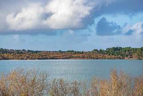 21-Lac d'Arjuzanx