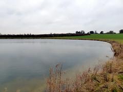 GOC Therfield 027: Pond