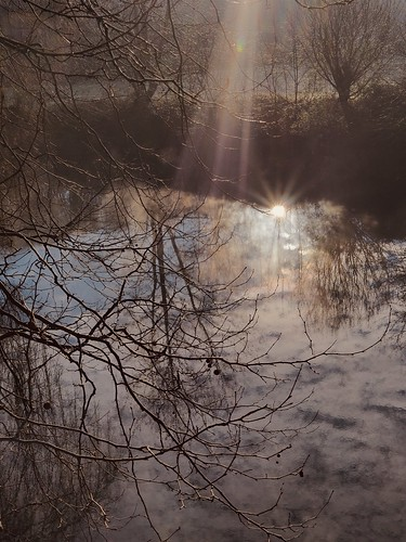 Reflets matinaux