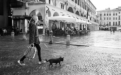 Padova Street Photography