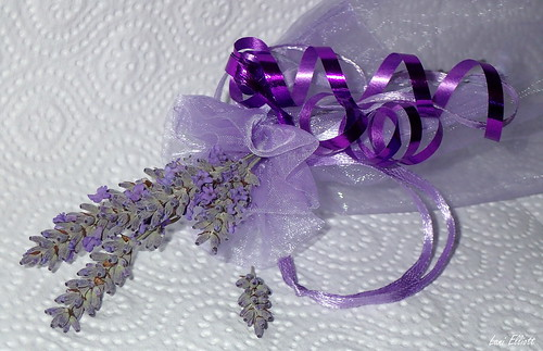 RIBBONS in Lavender......Looking close....on Friday !