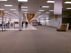 Sears as far as the eye can see