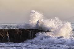 High Surf Jan 2 2020 Moran Beach Santa Cruz California 01