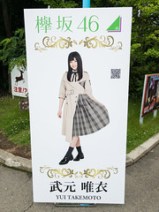 Fuji-Q Highland: Keyaki Republic 2019, Photo Panel