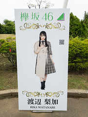 Fuji-Q Highland: Keyaki Republic 2018, Watanabe Rika Photo Panel