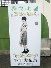 Fuji-Q Highland: Keyaki Republic 2019, Hirate Yurina Photo Panel
