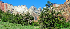 High Country Meadow, Zion NP, UT 2014