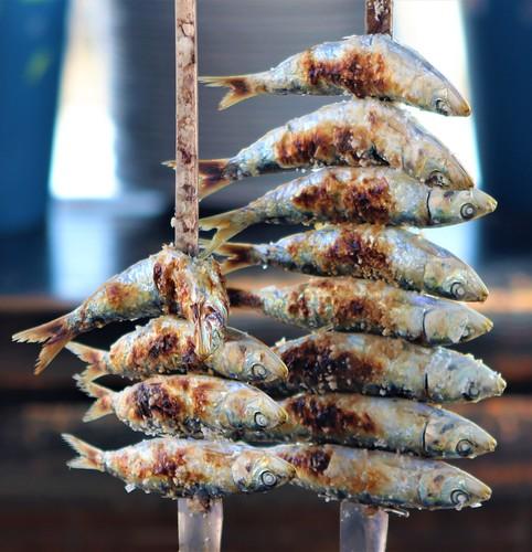 Smoking Sardines