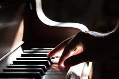 Piano Hand Playing Music Keyboard Edited 2020