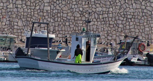Fishing Boat into Harbour