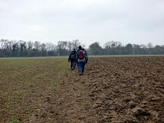 GOC Therfield 035: Muddy field