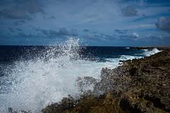 East coast Bonaire