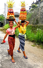 Balinese girls with Hindu offerings on their way to the temple