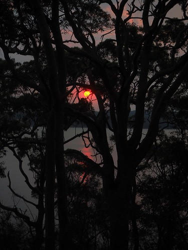 4/366 Bushfire sunset over lake Macquaire