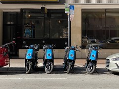 Revel Electric Moped Rentals Downtown Miami