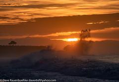 Santa Cruz Sunrise 1-2020