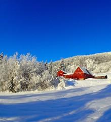 Mountain farm. Tuddal. Norway