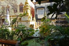 Phnom Penh, Wat Ounalom (17)