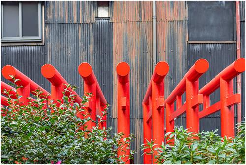 Nagoya torii
