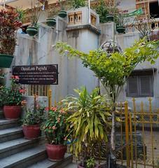 Phnom Penh, Wat Ounalom (21)