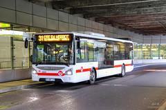 TCL / Iveco Urbanway 12 n°2443