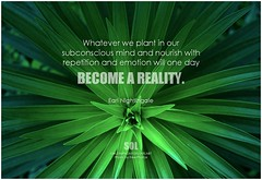 Earl Nightingale Whatever we plant in our subconscious mind and nourish with repetition and emotion will one day become a reality