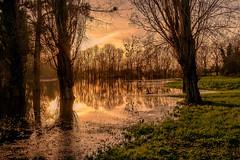 La Boutonne - Inondations 2019 - Photo of La Vergne