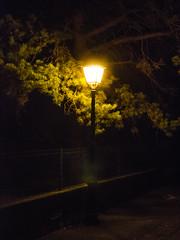 Par une chaude nuit d'été