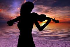 Violinist Violinist Music Sound Edited 2020