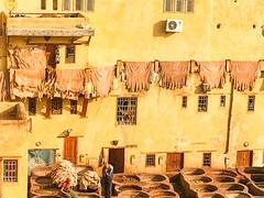 Fes, tannery, Morocco, 摩洛哥