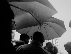Rainy januar day`s