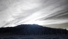 Mt San Jacinto (0423)