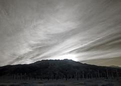 Mt San Jacinto (0419)